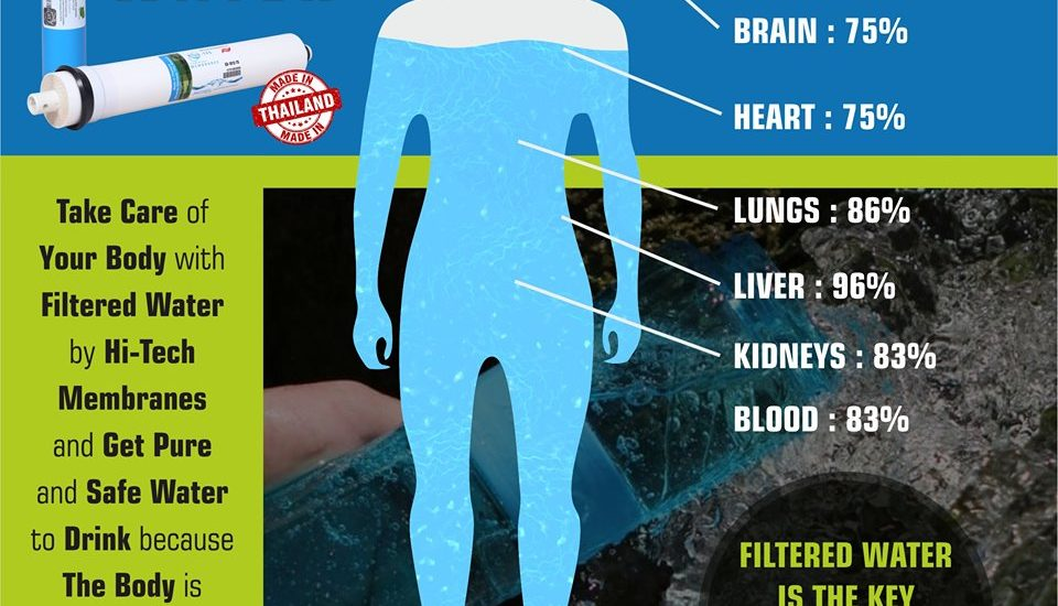 Human-body-and-water